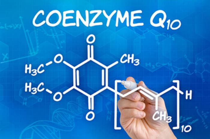 coenzima q10 integratore