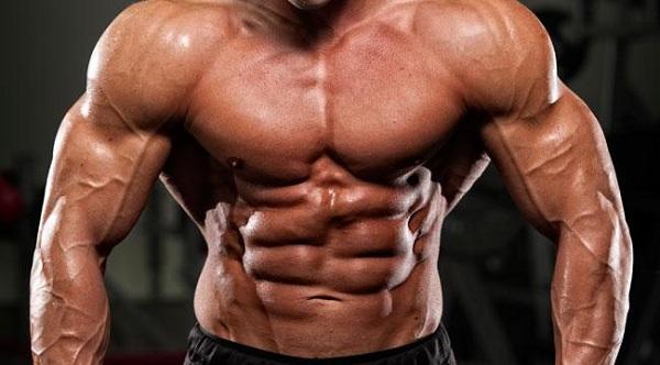 glutammina effetti su massa e prestazione