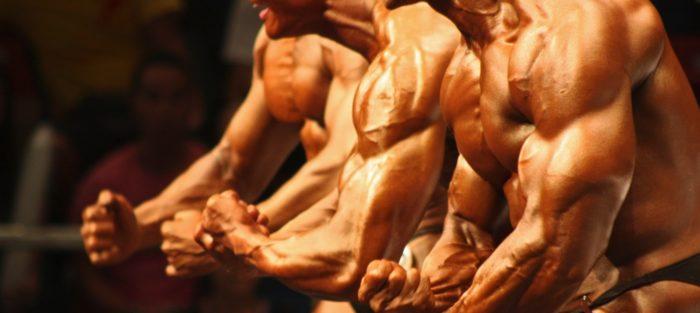 i muscoli non aumentano ecco perchè
